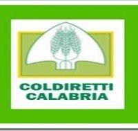 coldiretti calabria logo