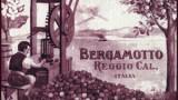 300px-Etichetta_1800_bergamotto_reggio_calabria