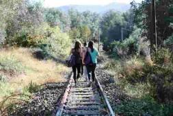 marcia del treno2