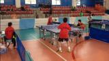 tennis tavolo cinquefrondi