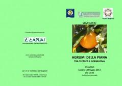 seminario agrumi rosarno