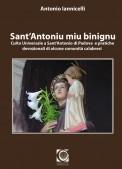 iannicelli cover