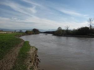 il fiume mesima