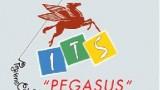 its pegasus polistena